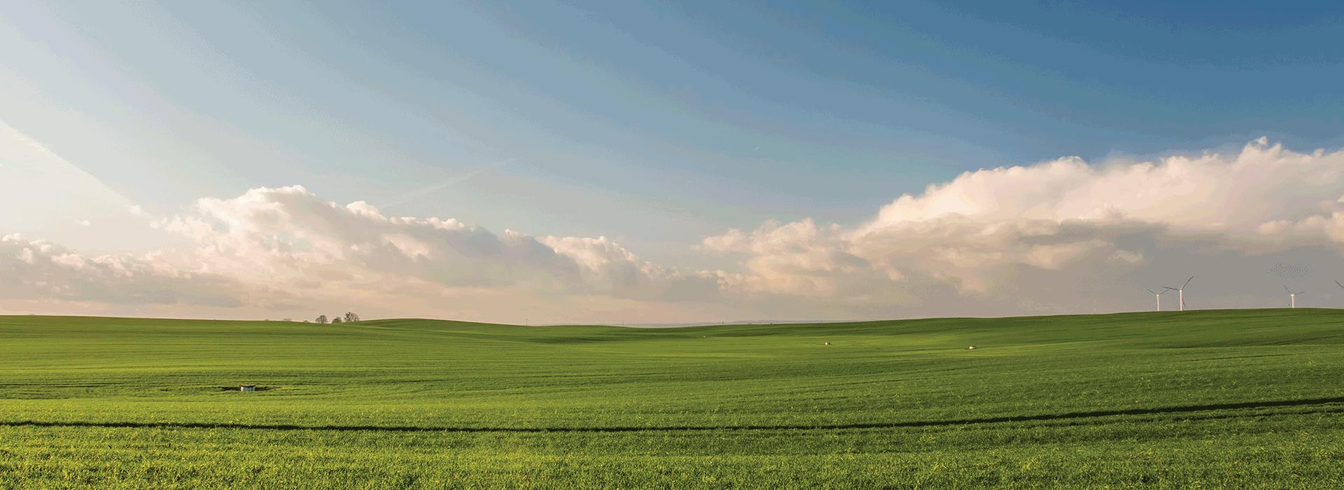 Land & Property