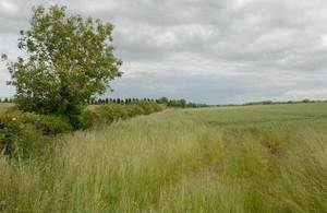 Countryside Stewardship Scheme