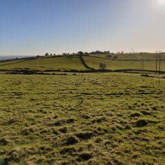 NOW SOLD – Grassland at Longcliffe